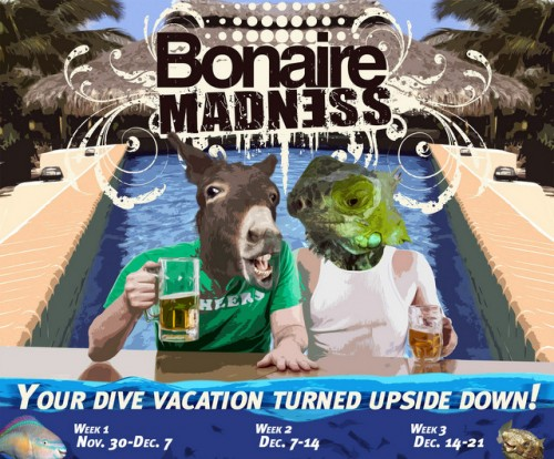 Bonaire Madness at Buddy Dive Resort, Belmar Oceanfront Apartments and Caribbean Club Bonaire