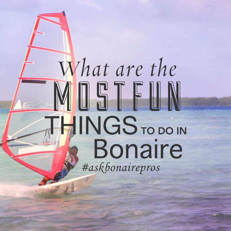 Monthly Rental Car >> Fun Things to Do on Bonaire