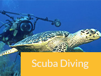 Category-ScubaDiving