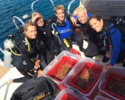 Coral Restoration on Bonaire at Buddy Dive-001