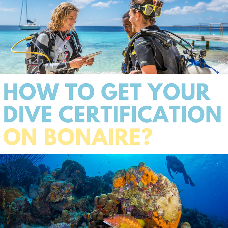 How To Get Your Dive Certification On Bonaire Scuba Diving