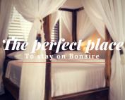 The perfect place to stay on Bonaire