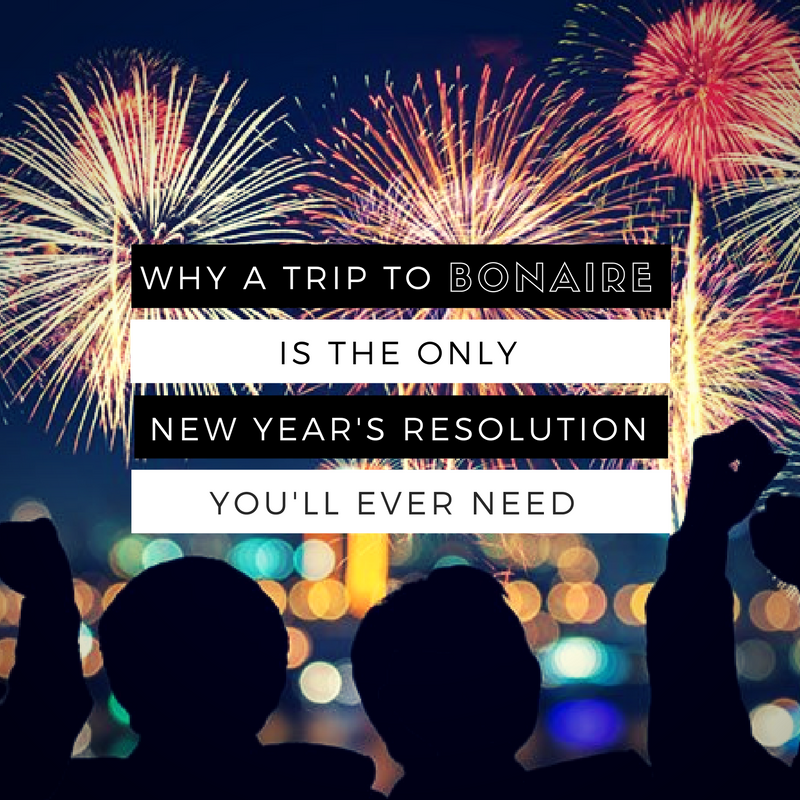 Why a trip to Bonaire is the only New Years resolution you'll ever need