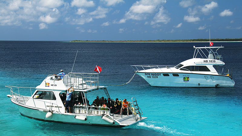 buddy dive Bonaire